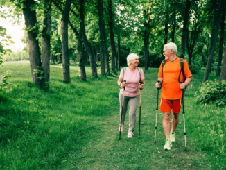 A senior couple walking in the forest