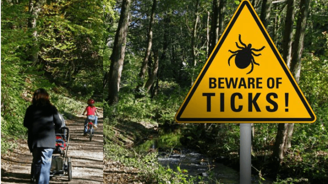 A sign of beware of ticks and 2 people in the park