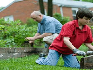 A father and a boy taking care the garden.